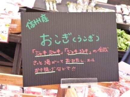 もっくる新城40.JPG