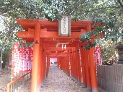 一宮白山神社52.JPG
