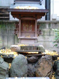 名古屋 若宮八幡社 (13).jpg