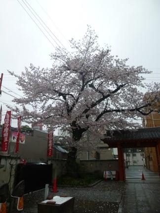 大光院(大須)16.JPG