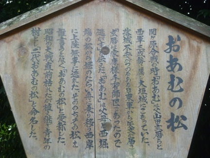 大垣城23.JPG