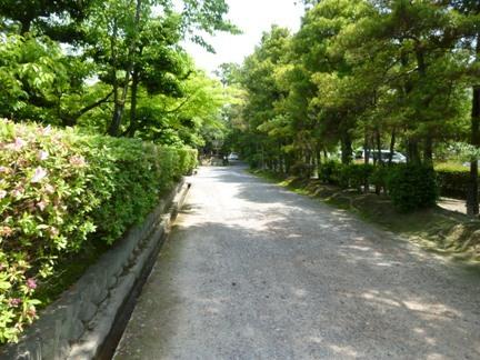 妙興寺03.JPG
