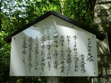 妙興寺55.JPG