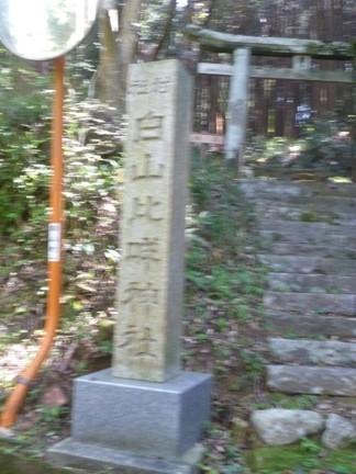 川口白山比咩神社04.JPG