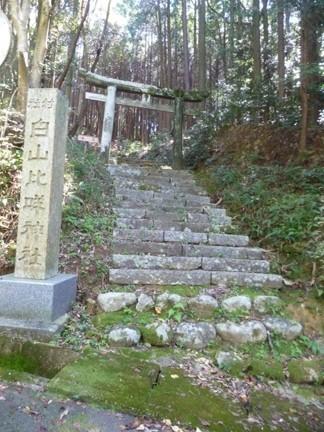 川口白山比咩神社05.JPG
