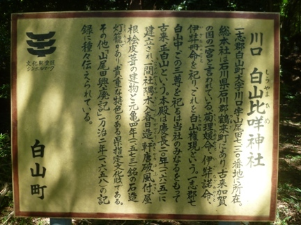 川口白山比咩神社16.JPG