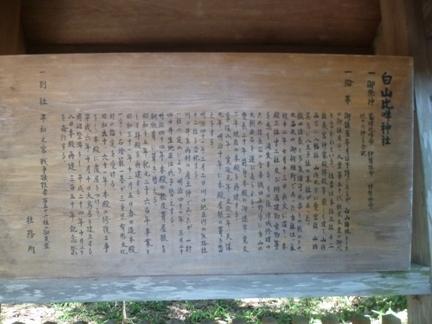 川口白山比咩神社17.JPG