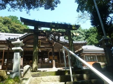 川口白山比咩神社25.JPG
