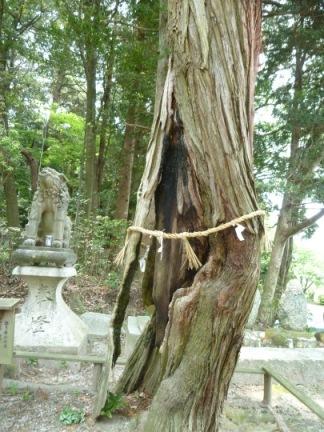 廣幡神社15.JPG