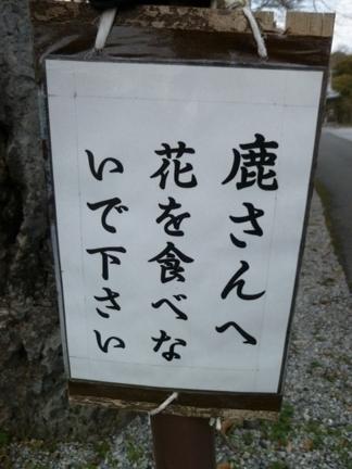 明星輪寺07.JPG