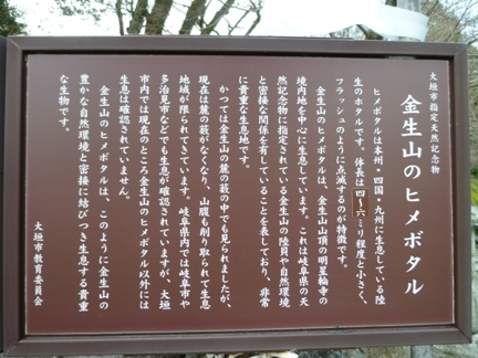 明星輪寺08.JPG