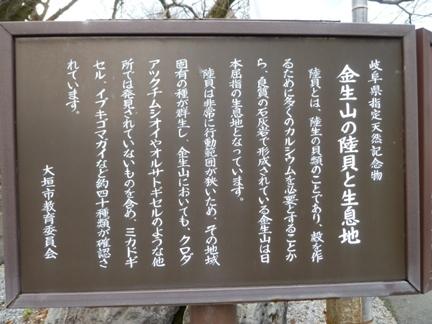 明星輪寺09.JPG