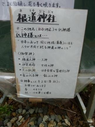 根道神社04.JPG