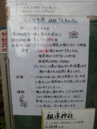 根道神社05.JPG