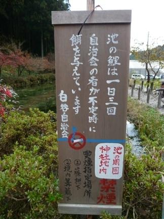 根道神社07.JPG