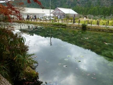根道神社14.JPG
