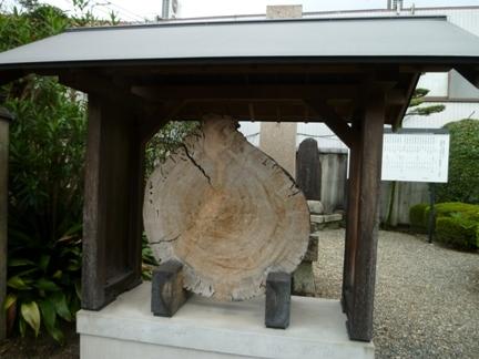 海蔵寺15.JPG