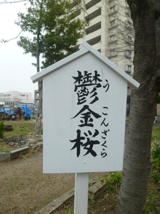 田光八幡社09.JPG