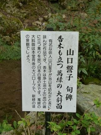 聖寶寺16.JPG