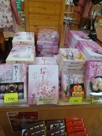 道の駅 うすずみ桜の里・ねお20.JPG