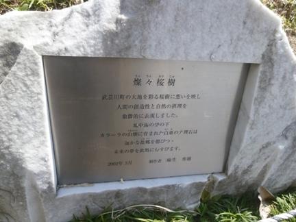 道の駅 むげ川05.JPG