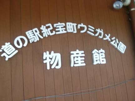 道の駅 紀宝町ウミガメ公園39.JPG