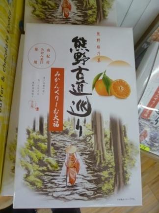 道の駅 紀宝町ウミガメ公園55.JPG
