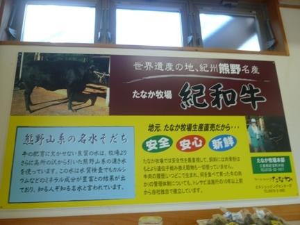 道の駅 紀宝町ウミガメ公園57.JPG