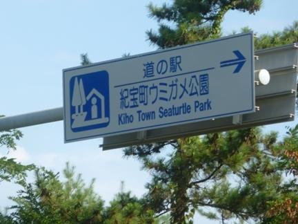 道の駅 紀宝町ウミガメ公園63.JPG