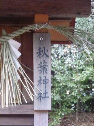 阿久比神社14.JPG