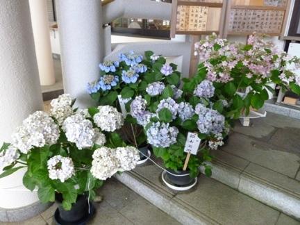 飯野神社16.JPG