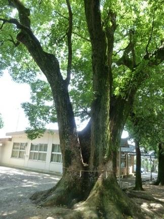 飯野神社24.JPG