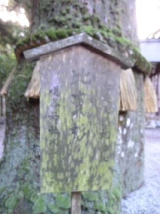 鳴谷神社17.JPG