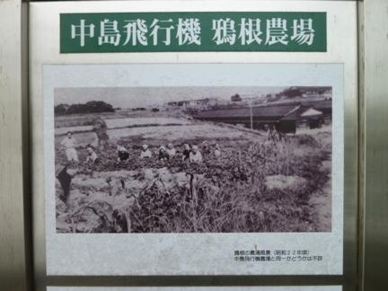 鴉根史跡公園17.JPG
