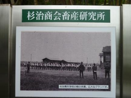 鴉根史跡公園23.JPG