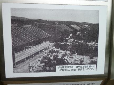鴉根史跡公園24.JPG