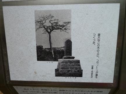 鴉根史跡公園27.JPG