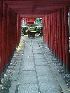 名古屋 若宮八幡社 (6).jpg