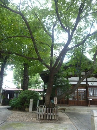 大須 三輪神社25.JPG