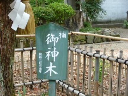 富部神社 (18).JPG