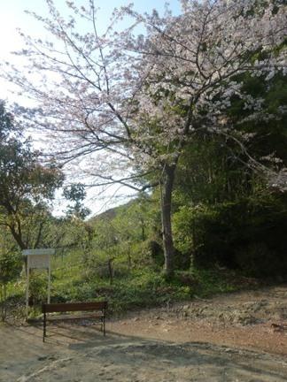 岩水寺75.JPG