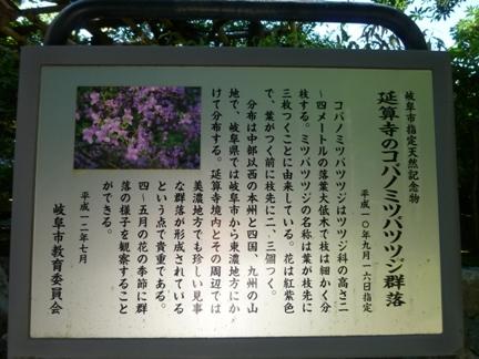 延算寺 本坊04.JPG