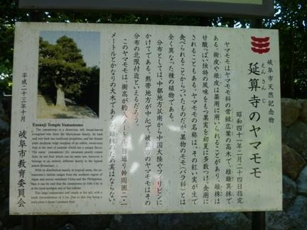 延算寺 本坊05.JPG
