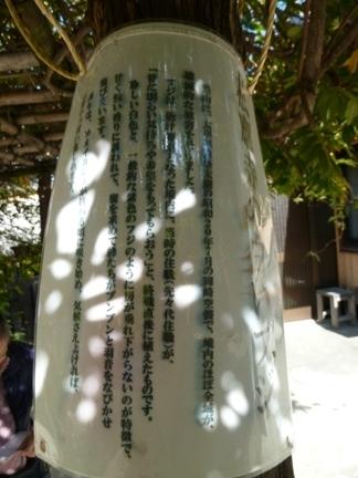 松應寺17.JPG