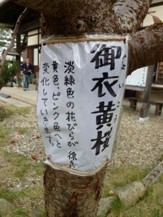 松應寺23.JPG
