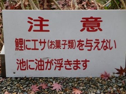 根道神社12.JPG