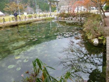 根道神社16.JPG