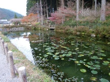 根道神社25.JPG