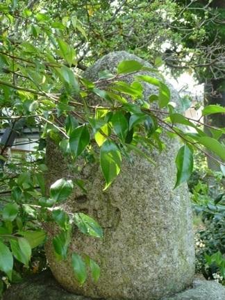 浜田神社15.JPG
