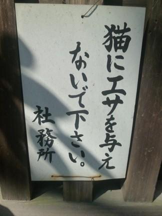 溝旗神社08.JPG